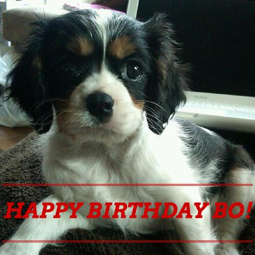 HAPPY BIRTHDAY BO!